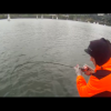 Movie: Spring Chinook Trolling A3TV