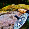 Steelhead fly fishing video