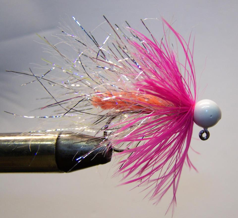 Peach body pink feather white head