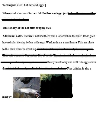 fishing article example 2